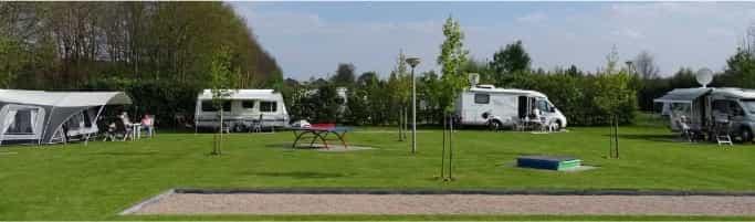 Camping de Lijsterbes | campeerveld